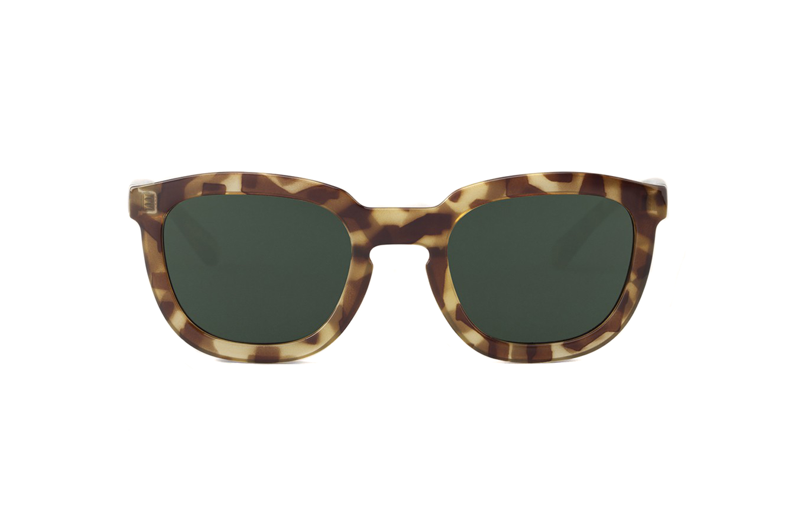 GH-11-High-Contrast-Tortoise-Lemarais-with-Classical-Lenses-2